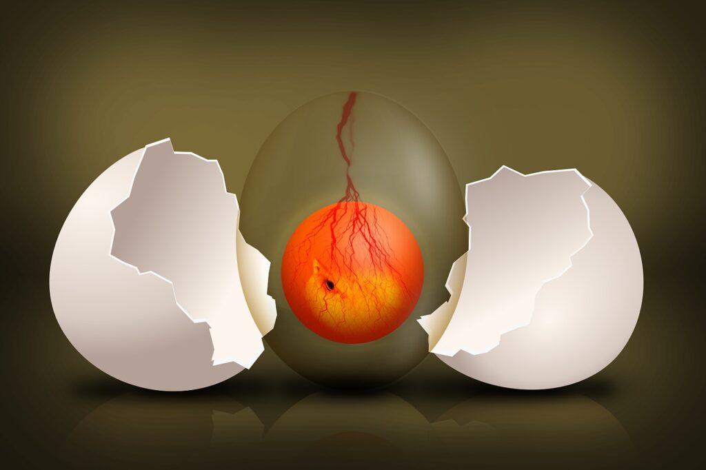 Maksud Mimpi Telur