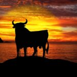 Maksud Mimpi Lembu